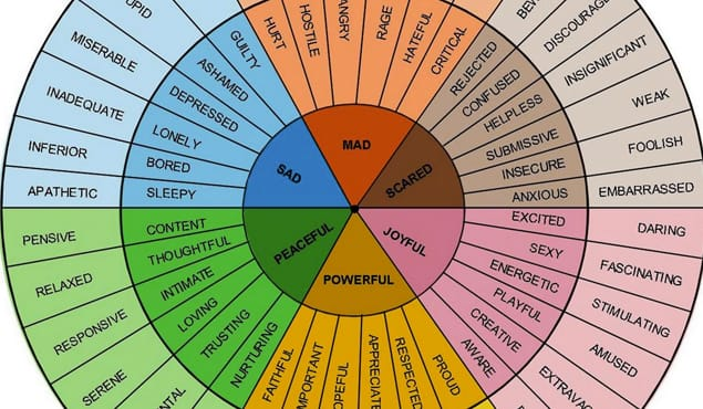 Emotional Wheel
