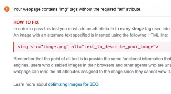 SEO Site Checkup Alt Text
